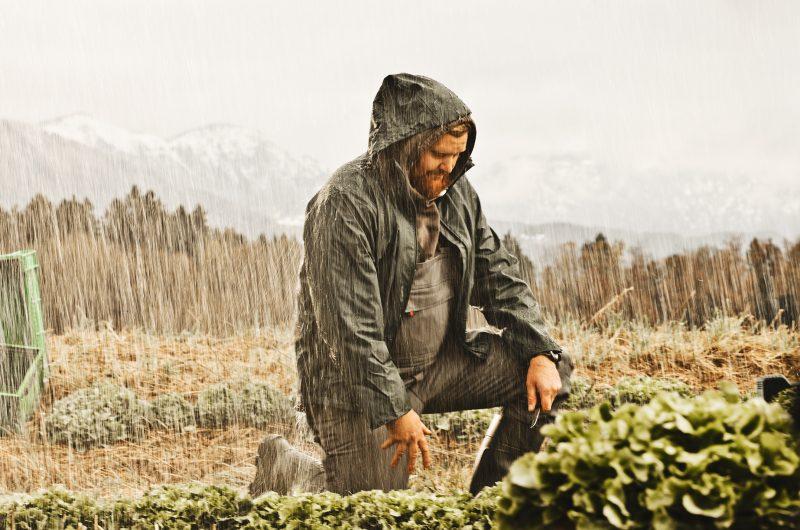 Image kampanja za ministerstvo za kmetijstvo